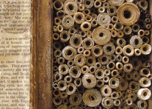 Library of Alexandria Scrolls