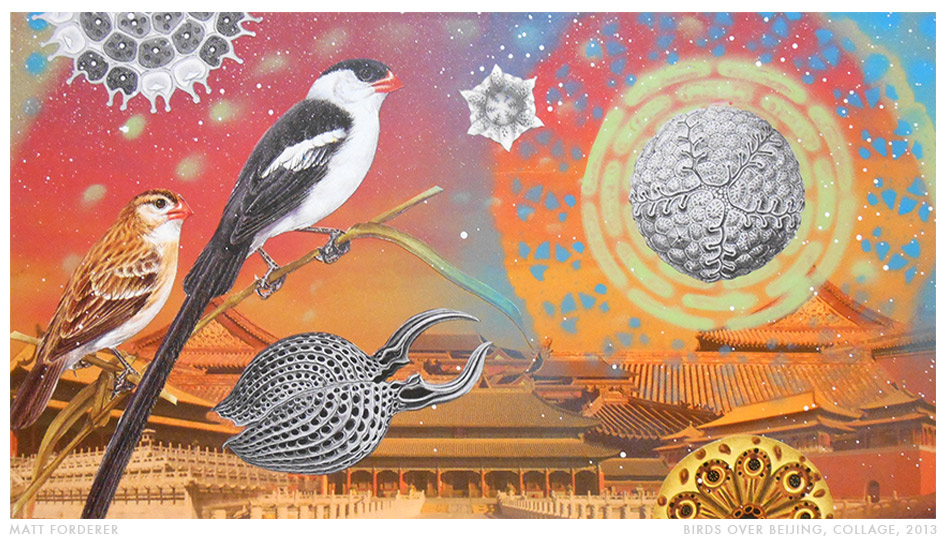 """Birds Over Beijing,"" collage by Matt Forderer"